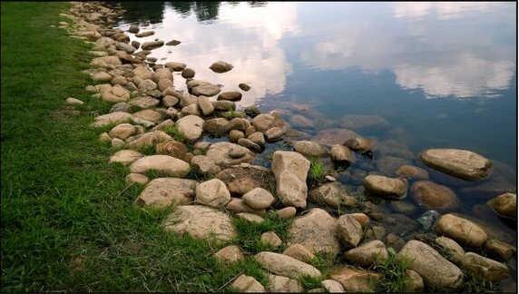 Cobble-Rivergreen 005-1
