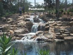 pondtastic