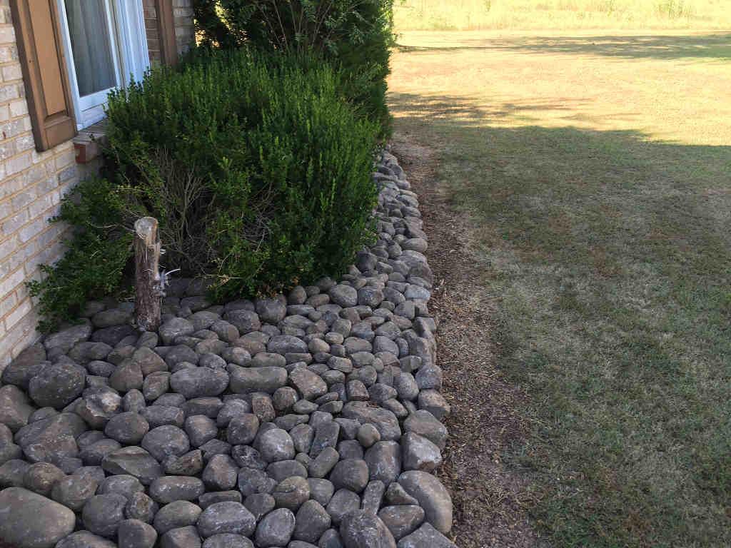 yard trim